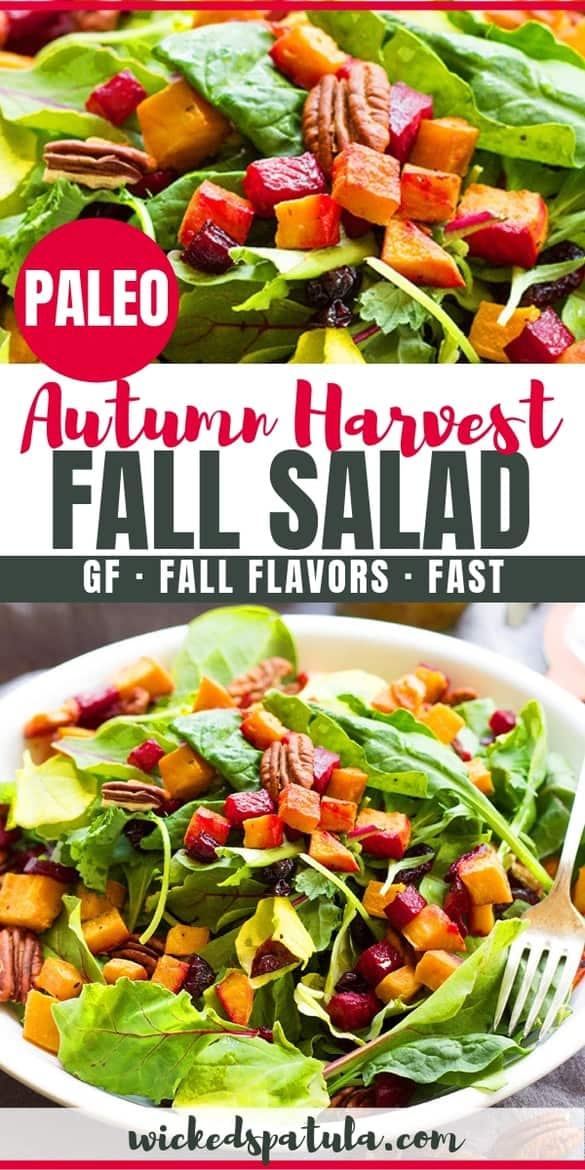 A healthy fall harvest salad recipe packed with sweet potatoes, beets, cranberries, pecans and drizzled with maple mustard dressing! This autumn salad will be one of your favorite fall salad recipes.