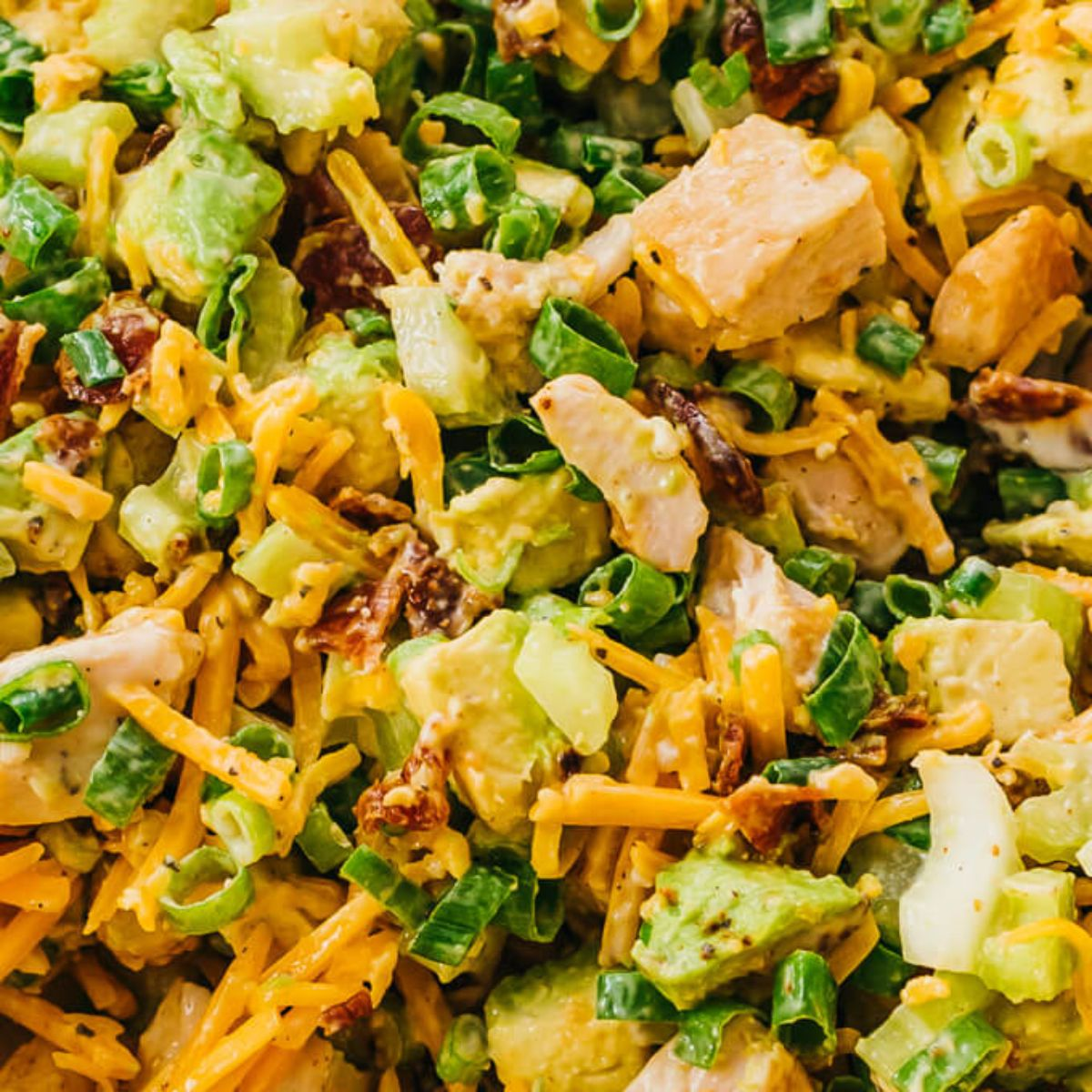 A close up of a creamy salad with shredded cheese, chicken, avocado and scallions