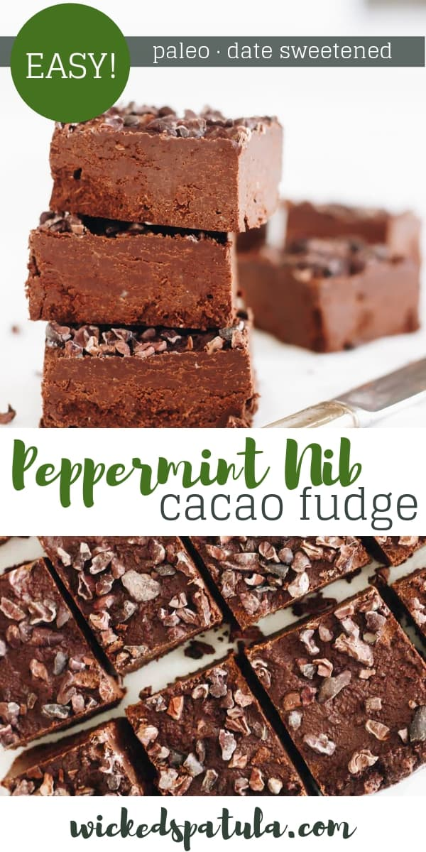 Date Sweetened Peppermint Cacao Nib Fudge - Pinterest image